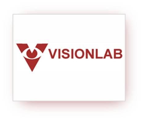 LogoVisionlab